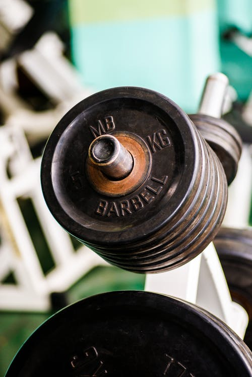 Barbell stand with weight plates in gym