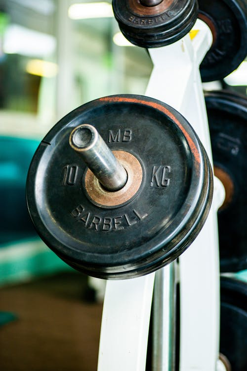 Barbell plates on rack in modern sports club