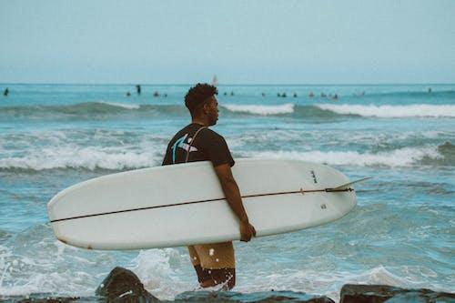 Kostenloses Stock Foto zu canon, hawaii, kamera