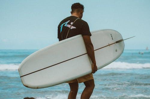 Kostenloses Stock Foto zu hawaii, oahu, paradies