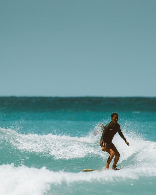 人, 冲浪文化, 夏威夷, 天堂 的 免费素材图片