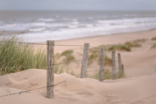 Free stock photo of Duinen, golven, herfst, Holland
