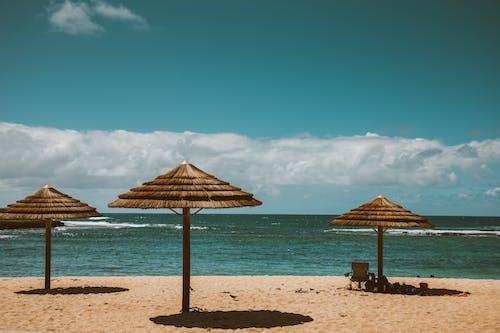 Brown Wooden Beach Lounge Chairs on Beach Shore