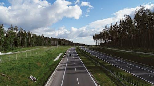 Asphalt roadway among picturesque green forest