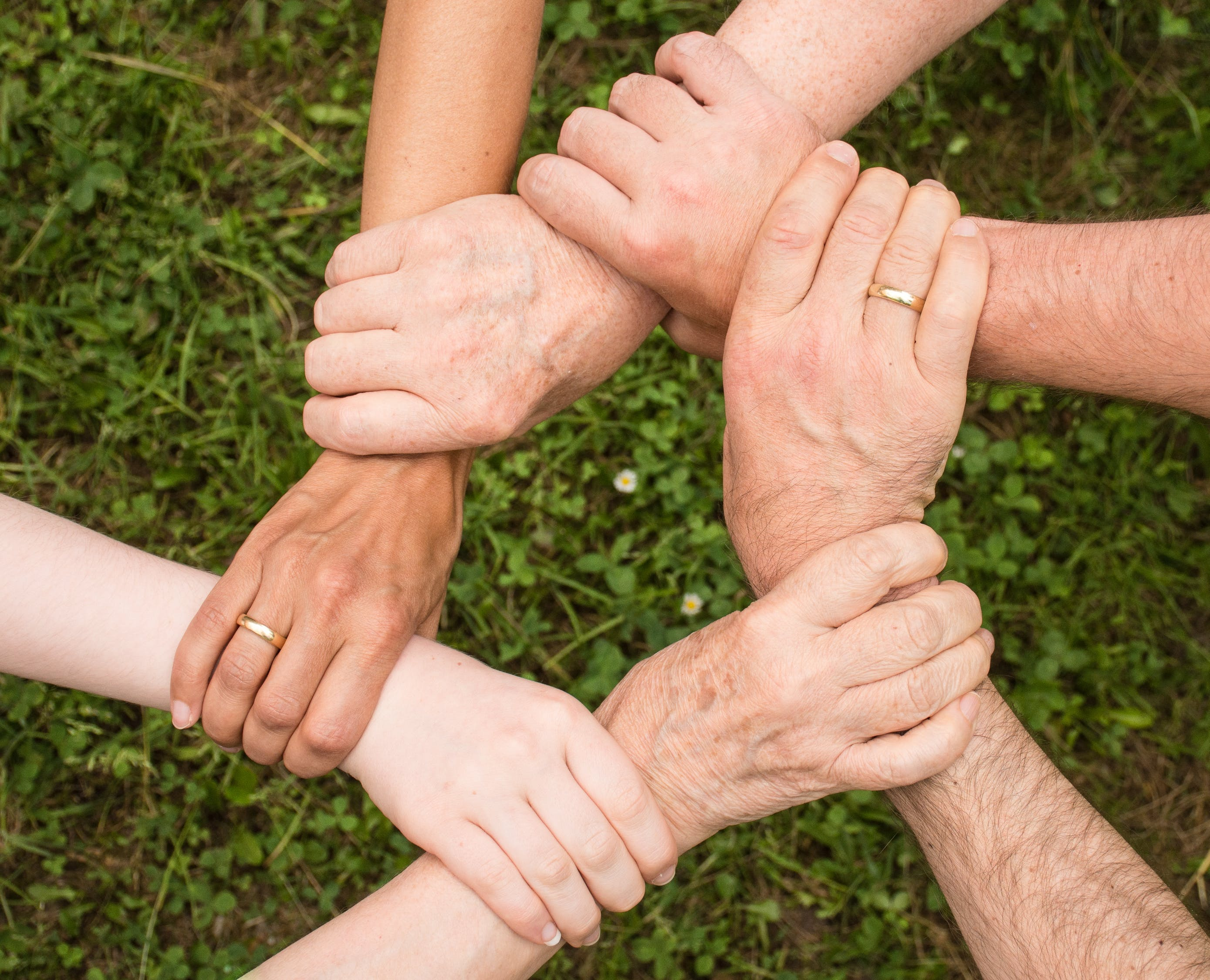 Group of People Holding Arms