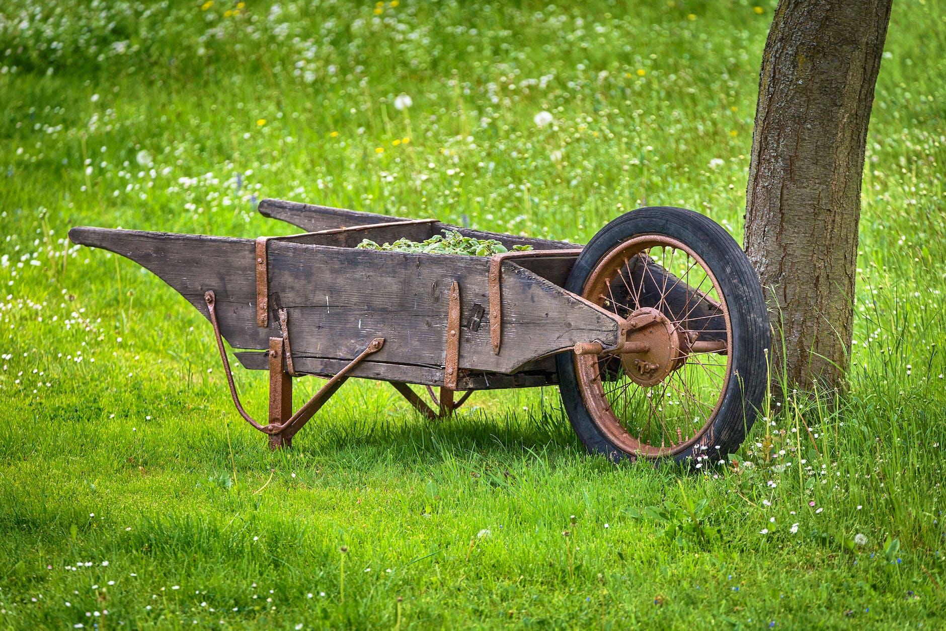 11 Handy Garden Carts For Hauling | Gardening Tool Ideas