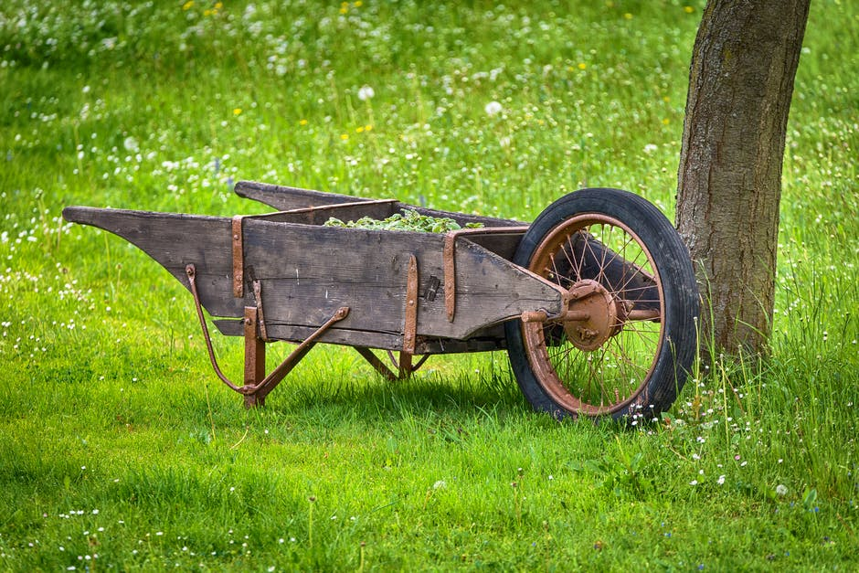 agriculture, cart, close-up