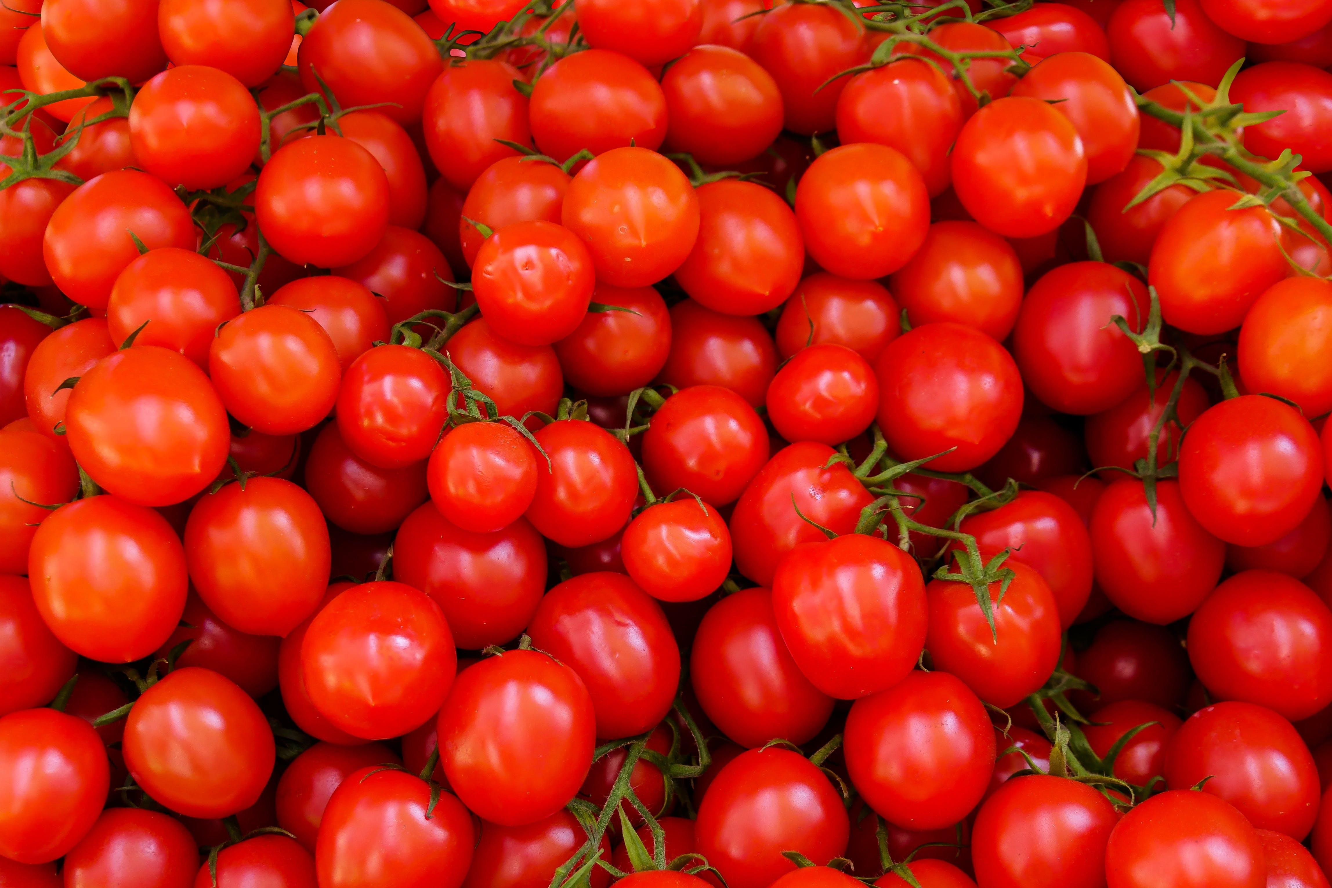 abundance, agriculture, fresh