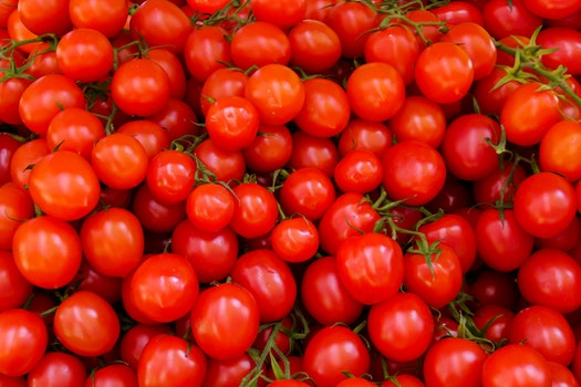 Free stock photo of healthy, tomatoes, agriculture, fruit