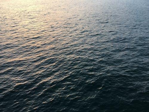 Ilmainen kuvapankkikuva tunnisteilla aalto, aaltoileva, auringonvalo