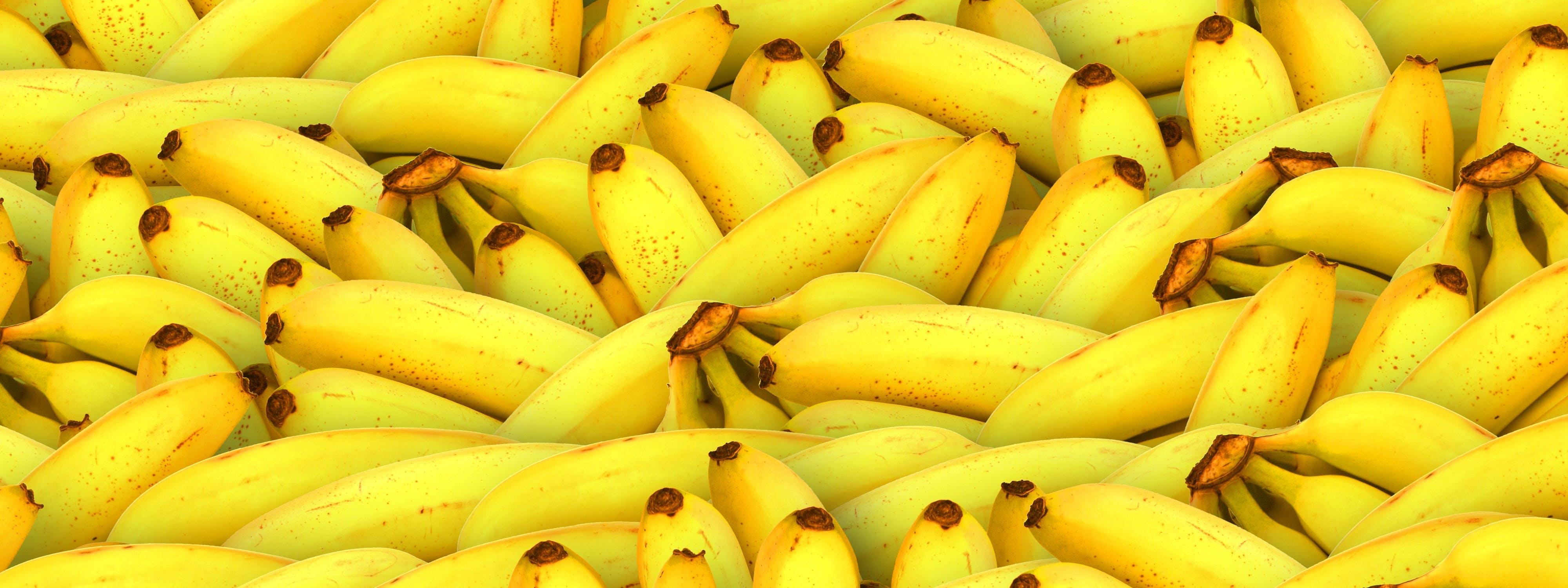 Free stock photo of banana, banner, food, fruit