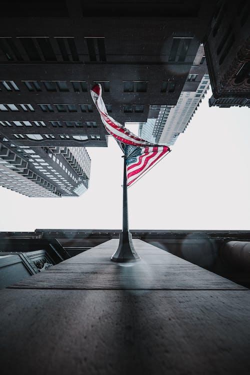 คลังภาพถ่ายฟรี ของ 4 กรกฎาคม, กลางแจ้ง, การเคลื่อนไหว, ค้นหา