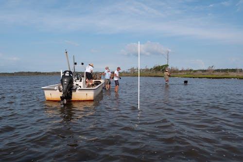 Бесплатное стоковое фото с agbiopix, аквакультура, берег, морепродукты