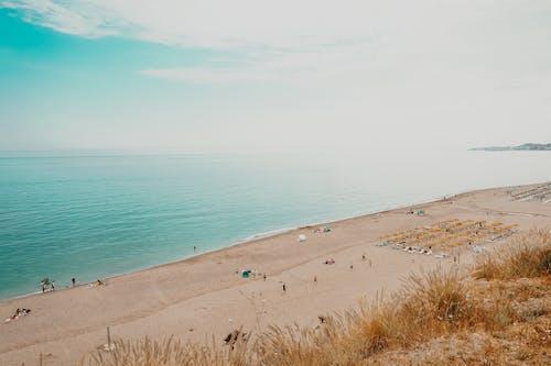 Бесплатное стоковое фото с активный отдых, беззаботный, берег