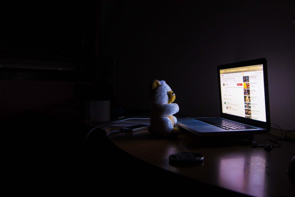 Bear Plush Toy Facing Laptop