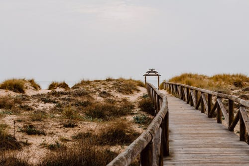 Rural wooden path running to ocean coast