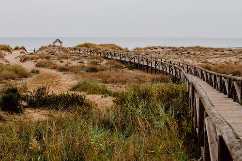 Wooden path through sandy coast to ocean