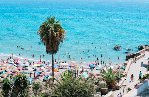 Безкоштовне стокове фото на тему «барвистий, берег, берег моря»