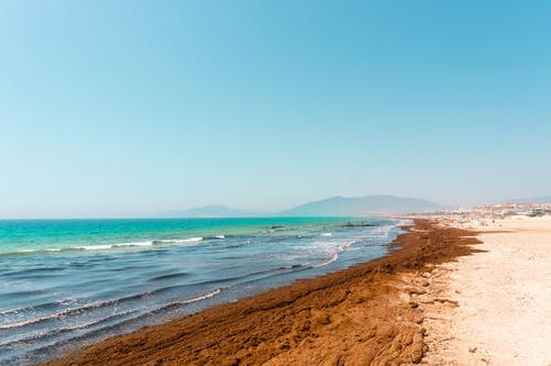 Amazing scenery of foamy waves washing sandy coast of tropical resort under bright blue sky