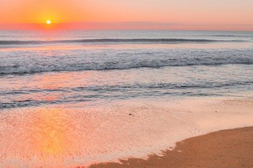 夏天, 夏季, 太陽, 招手 的 免費圖庫相片