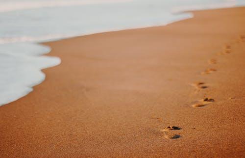 假期, 夏天, 夏季, 太陽 的 免費圖庫相片