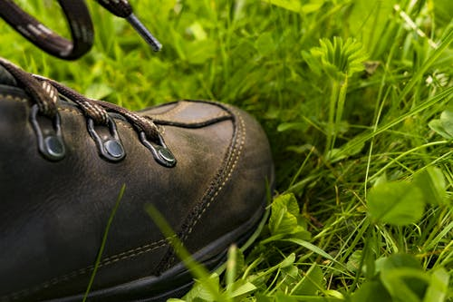 Black Leather Shoe on the Grass