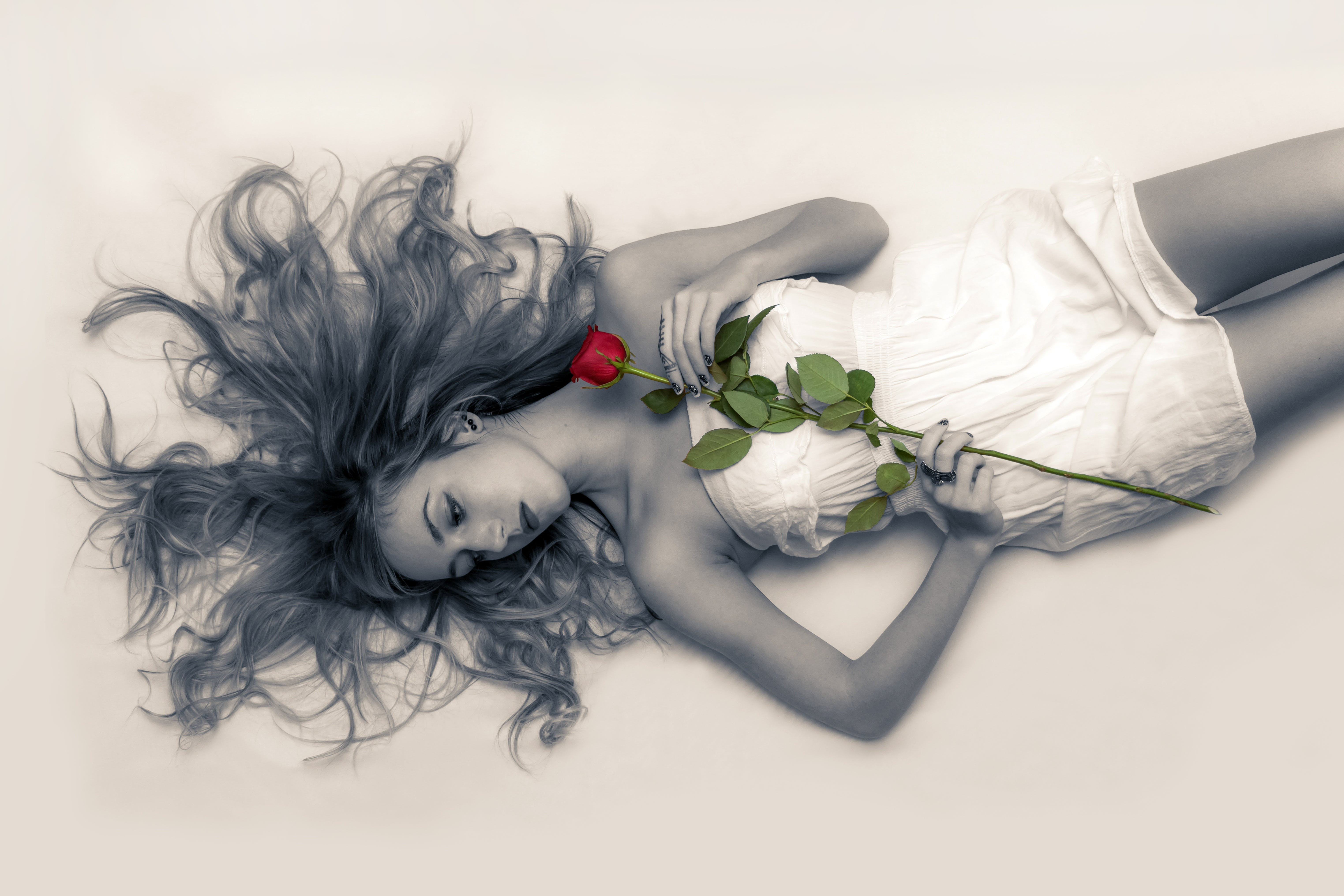 Lying Woman Holding Red Rose