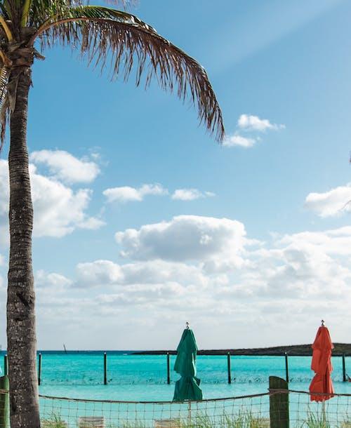 Free stock photo of atlantic ocean, beach, beach chair