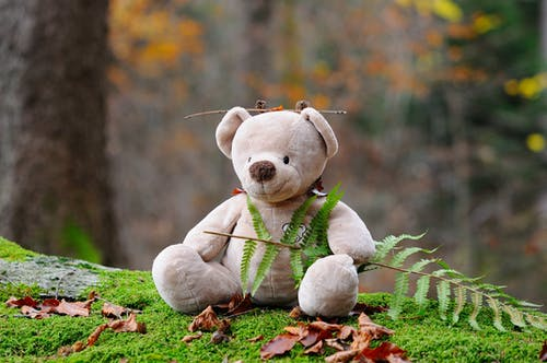 Gray Bear Plush Toy on Green Grass during Daytime