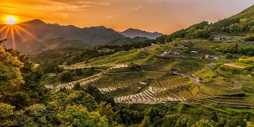 Základová fotografie zdarma na téma farma, hory, hřiště, kopec