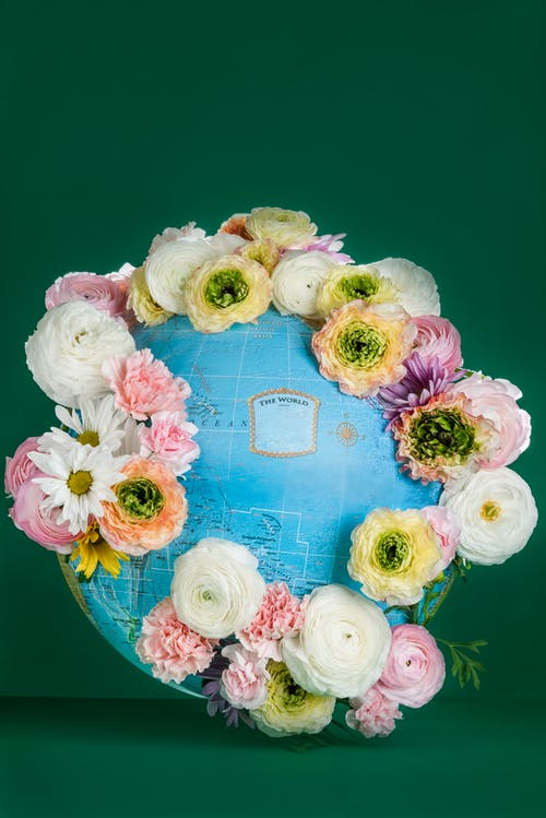 Pink and White Flowers On A Globe