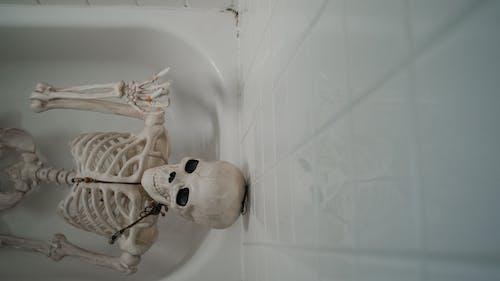 White Skeleton on White Ceramic Bathtub