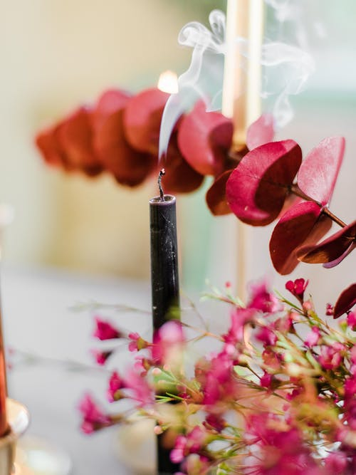 Black Candlestick Beside Pink Flowers