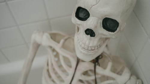 White and Black Skeleton Figurine
