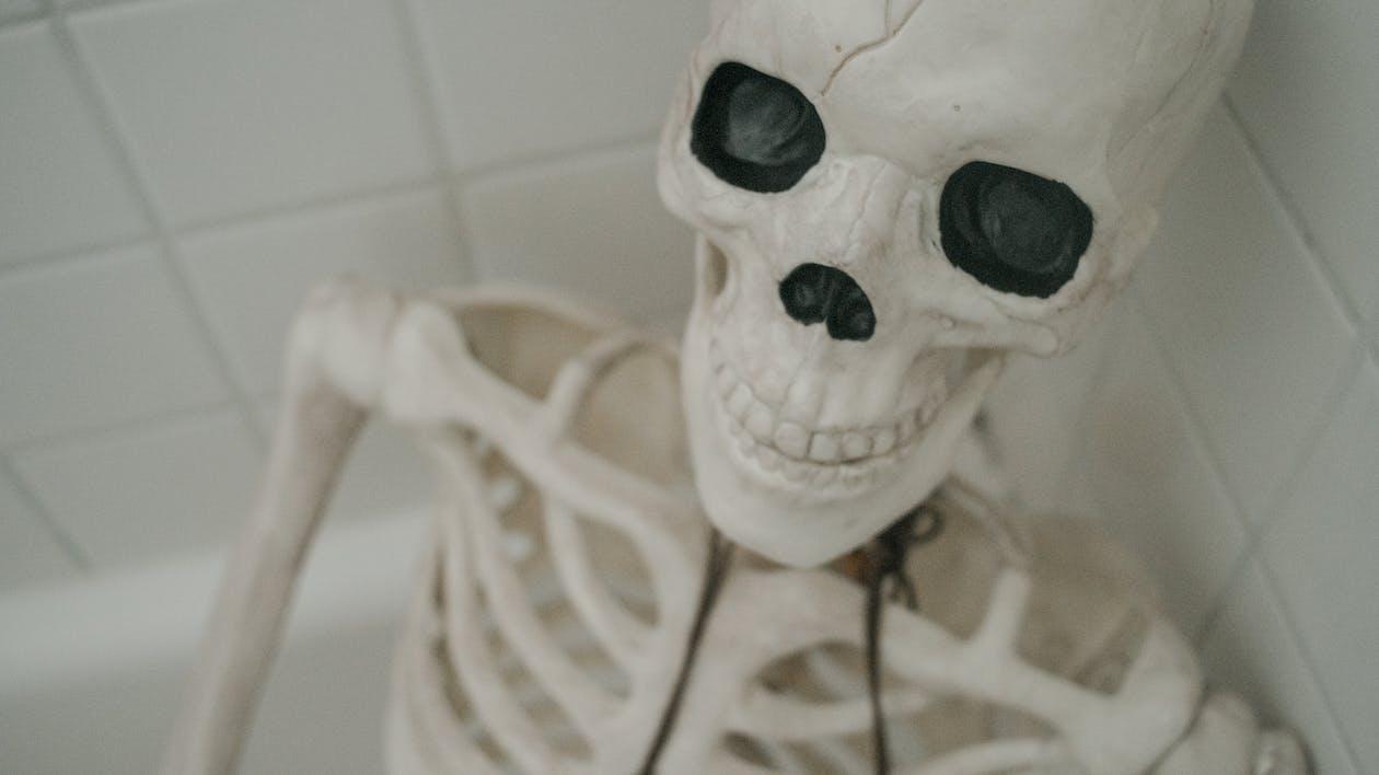 White and Black Skeleton Figurine