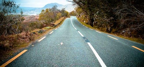 Gratis lagerfoto af asfalt, frihed, gade, kurve