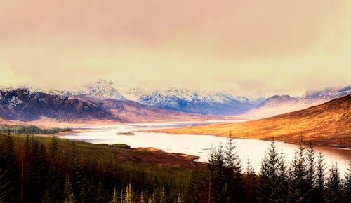 Бесплатное стоковое фото с hdr, вечер, гора, деревья