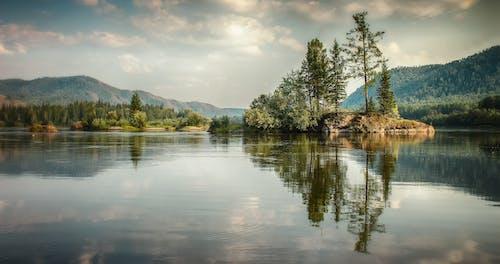 Darmowe zdjęcie z galerii z brzeg jeziora, chmury, dolina, drewno