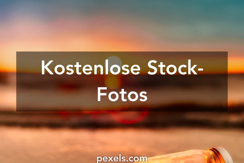 250+ Nahaufnahme Muschi Fotos · Pexels · Kostenlose Stock