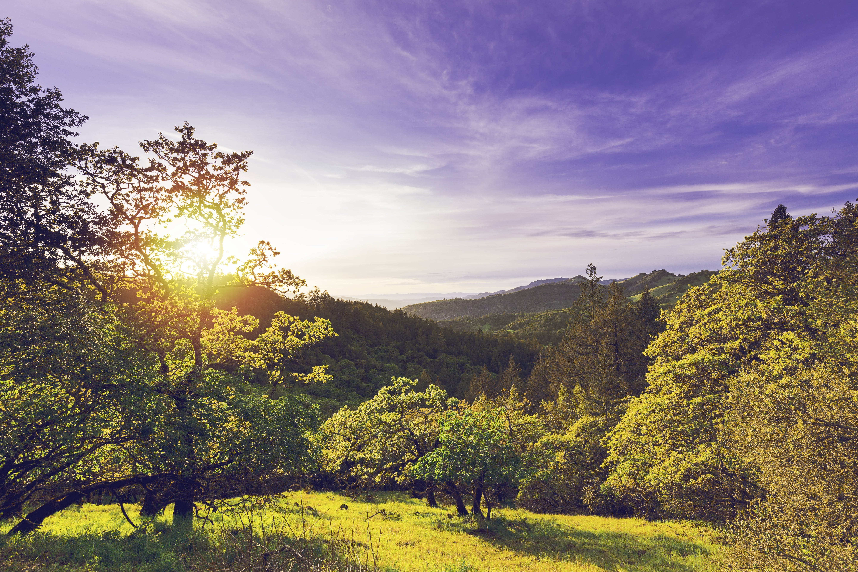 agriculture, california, clouds