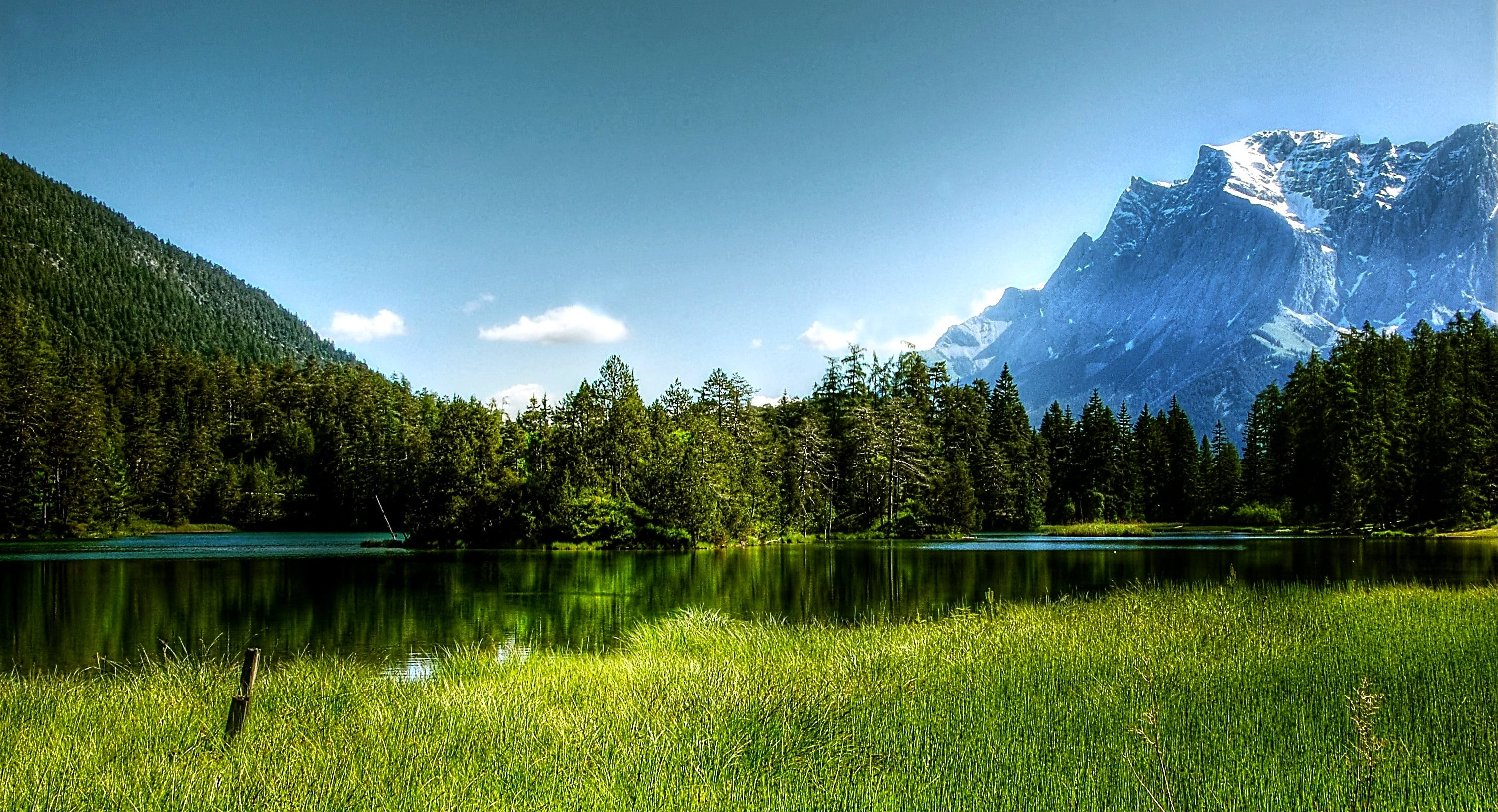 Lake Surrounded by Pine Trees Near Alps Mountains