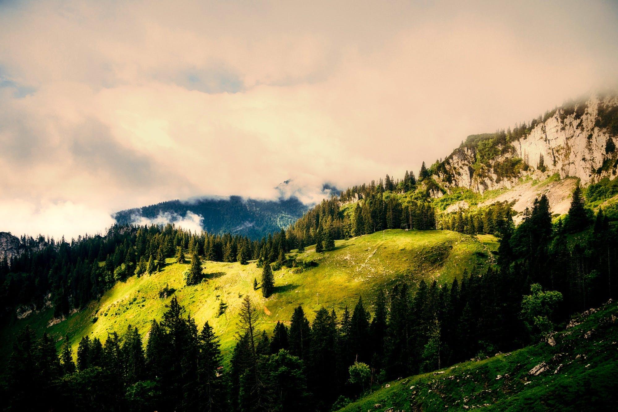 Kostenloses Stock Foto zu bäume, berg, dämmerung, deutschland