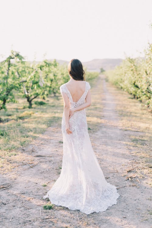 Gratis arkivbilde med blomst, brud, brudekjole