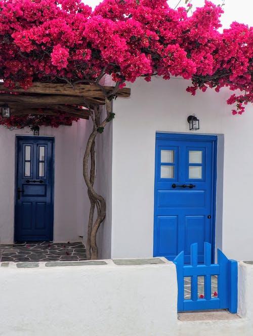 Gratis stockfoto met architectuur, binnenkomst, blauw, buitenshuis