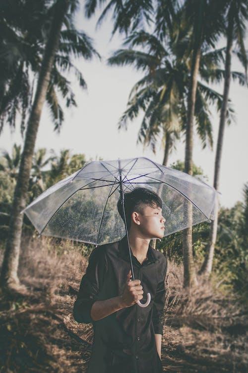 Woman in Black Coat Holding Umbrella