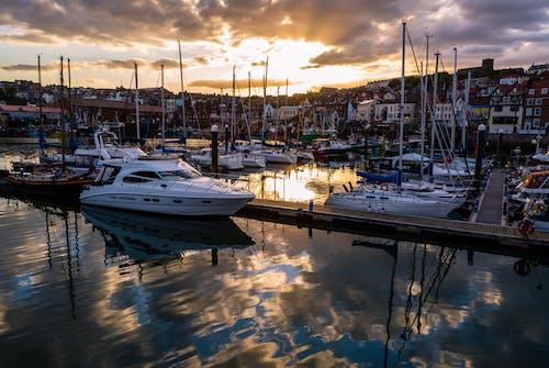 Gratis arkivbilde med båter, båthavn, feriested, hav
