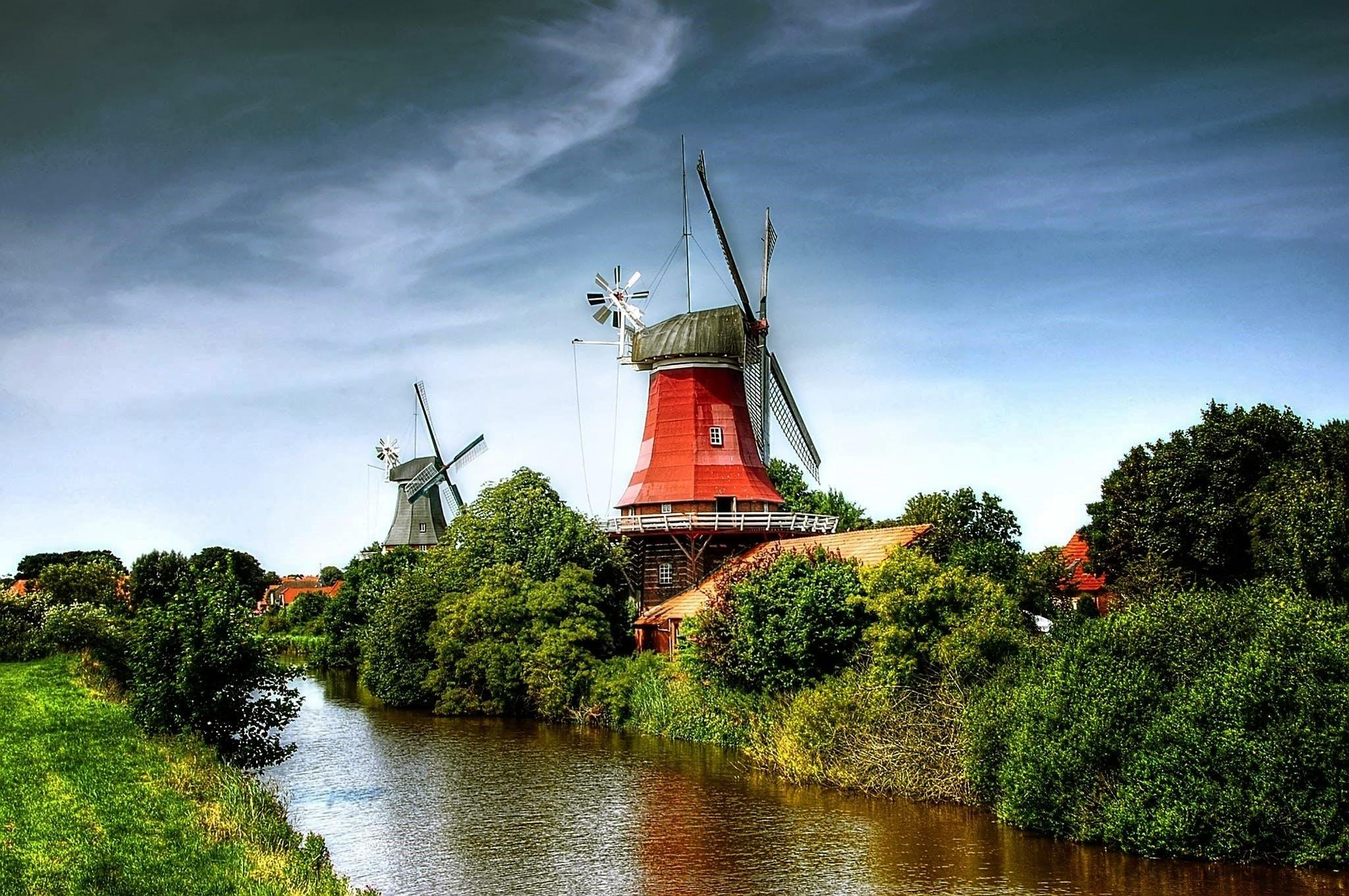 Windmill Near on Forest
