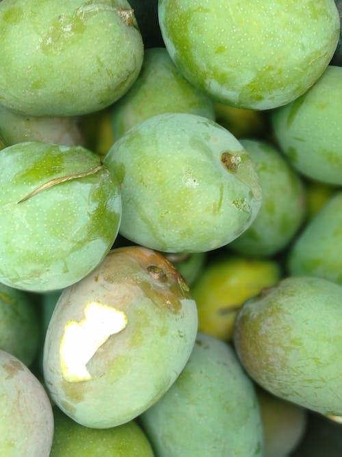 Free stock photo of green mango, mangos, Manjo