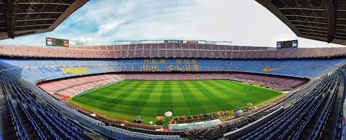 게임, 경기, 경기장의 무료 스톡 사진