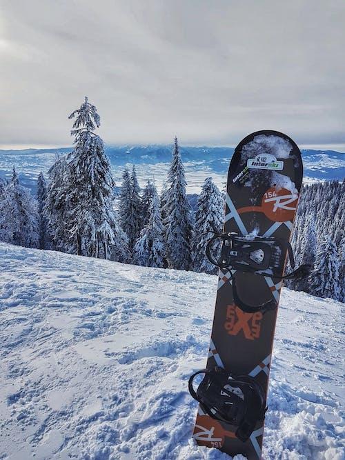 겨울, 눈, 스노우보더의 무료 스톡 사진